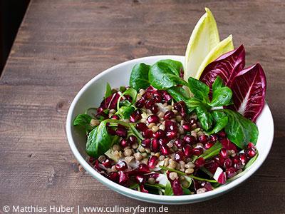 Foto winterliche Salate mit Alblinsen