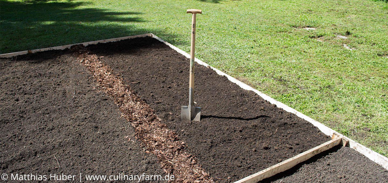 aus Rasen wird ein Gemüsebeet